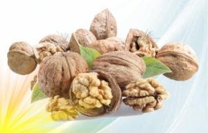 polza-gretskih-orehov